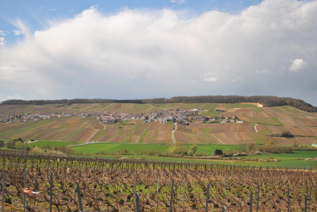 Village de Monthelon où se situe le Champagne Julien Chopin vigneron